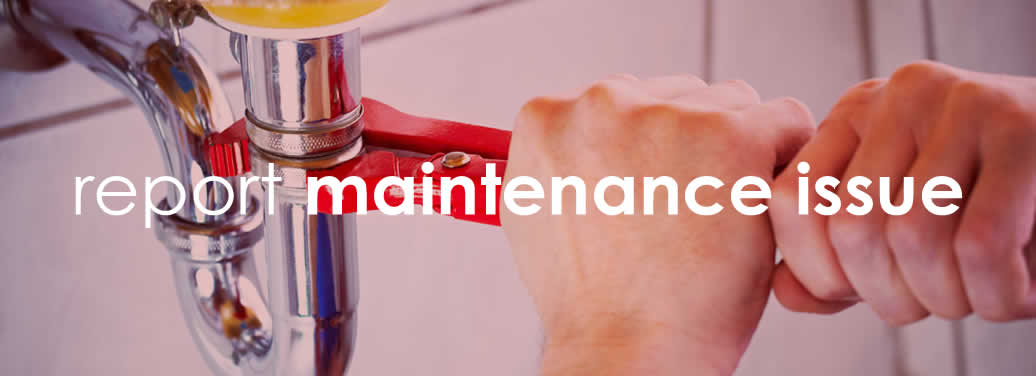 reportmaintenance2018RED2@2x