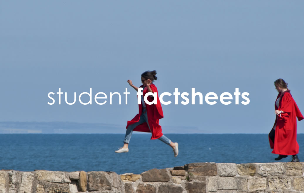 studentfactsheets@2x